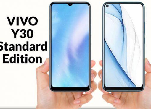Vivo-Y30-Standard-Edition-